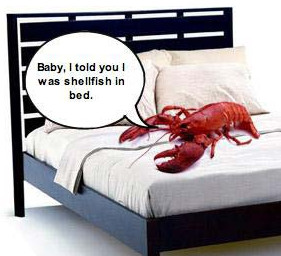 Shelfish in bed