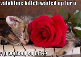Valentines Day Kitty