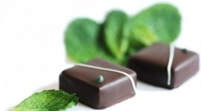 Why Mint Tastes Cold