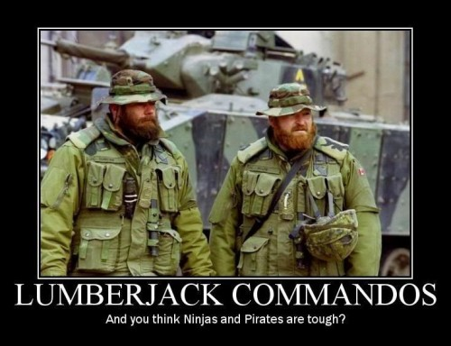 LUMBERJACK COMMANDO Demotivator