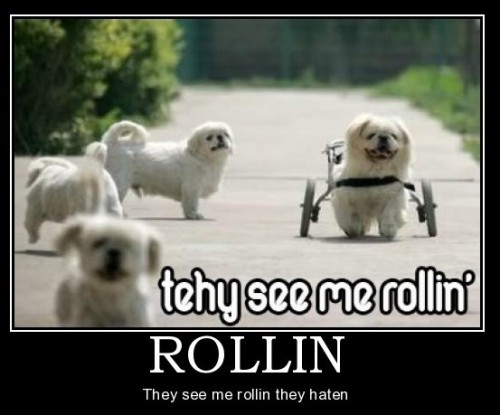 Rollin Demotivator