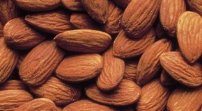Almonds Are Not Nuts