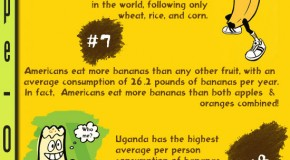15 Facts You Probably Didn't Know About Bananas