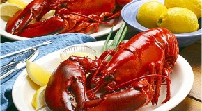 Why Lobsters and Crabs Turn Red When Cooked