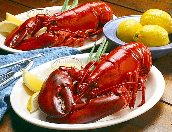 http://www.todayifoundout.com/wp-content/uploads/2010/10/Why-lobsters-and-crabs-turn-red-when-cooked.jpg