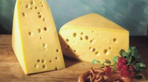 Why Swiss Cheese Has Holes in It