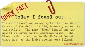 "The Name ""Ewok"" was Never Actually Spoken in Return of the Jedi"