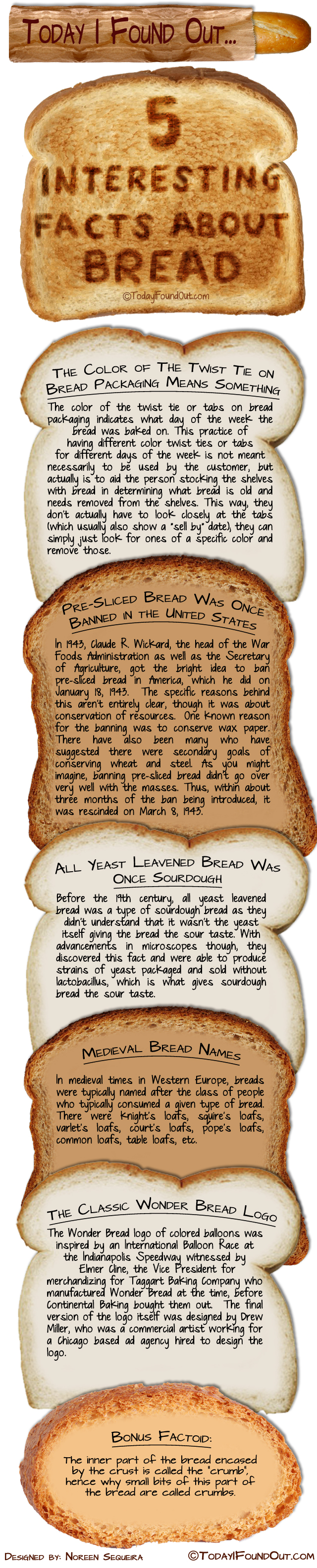 Bread Facts Infographic