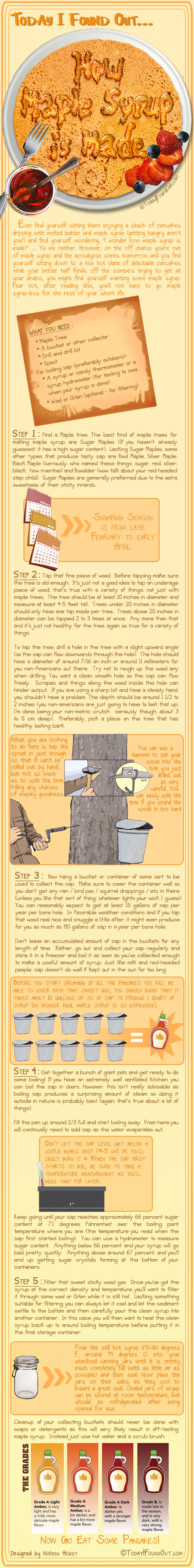 How Maple Syrup Is Made Infographic