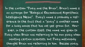"In Pinky and the Brain, Brain's Name is an Acronym for ""Biological Recombinant Algorithmic Intelligence Nexus"""