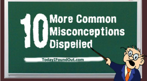 10 More Common Misconceptions Dispelled