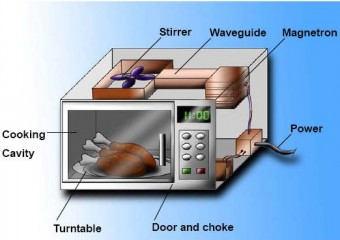 Myth Microwaves Cook From The Inside Out