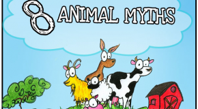 8 Animal Myths Dispelled