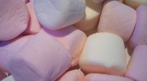 Marshmallows Were Originally Made from the Sap of the Marshmallow Plant