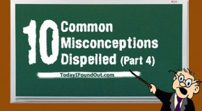 10 Common Misconceptions Dispelled (Part4)