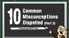 10 Common Misconceptions Dispelled (Part 3)