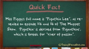 "Miss Piggy's Full Name is ""Pigathia Lee"""