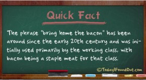 "The Phrase ""Bring Home the Bacon"" Originated When Bacon was a Staple Meat for the Working Class"