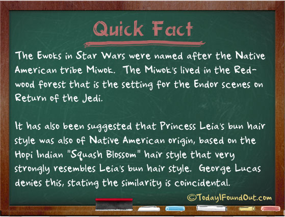 The ewoks were named after the native american tribe miwok for Fun facts about america