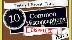 10 Common Misconceptions Dispelled- Part 5