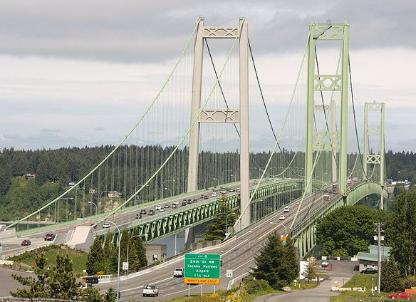 The Only Victim of the Tacoma Narrows Bridge Collapse was a Three Legged Dog