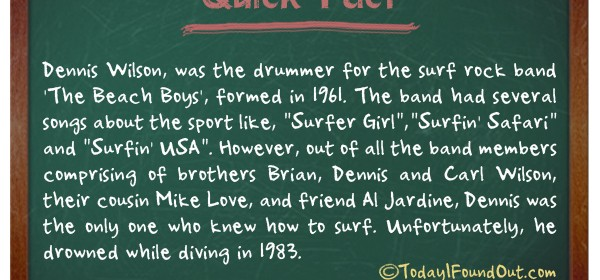 TIFO Quick Fact- The Beach Boys Fact