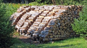 Why Firewood is Measured in Cords and the Origin of Other Odd Units of Measurement
