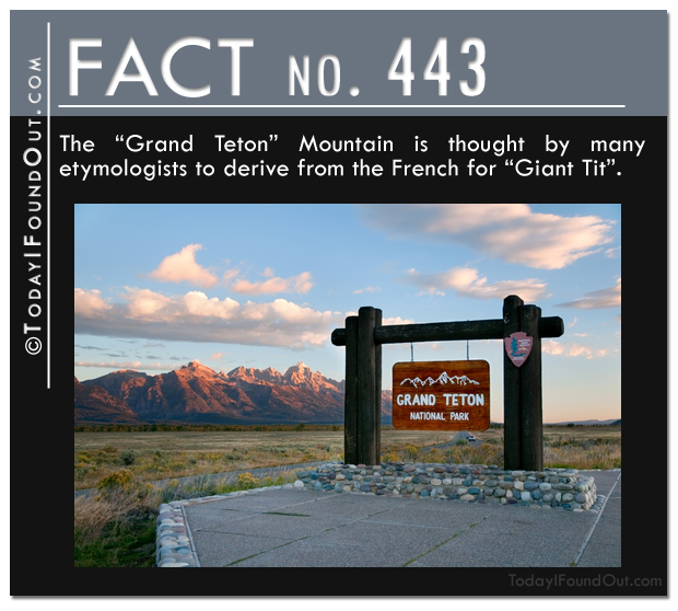 TIFO Quick Fact-The Grand Teton Mountain is thought by many etymologists to derive from the French for Giant Tit