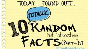 10 Totally Random Facts (Part-4)