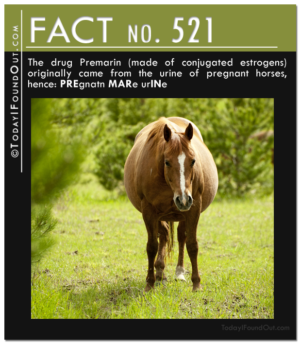 Premarin-fact