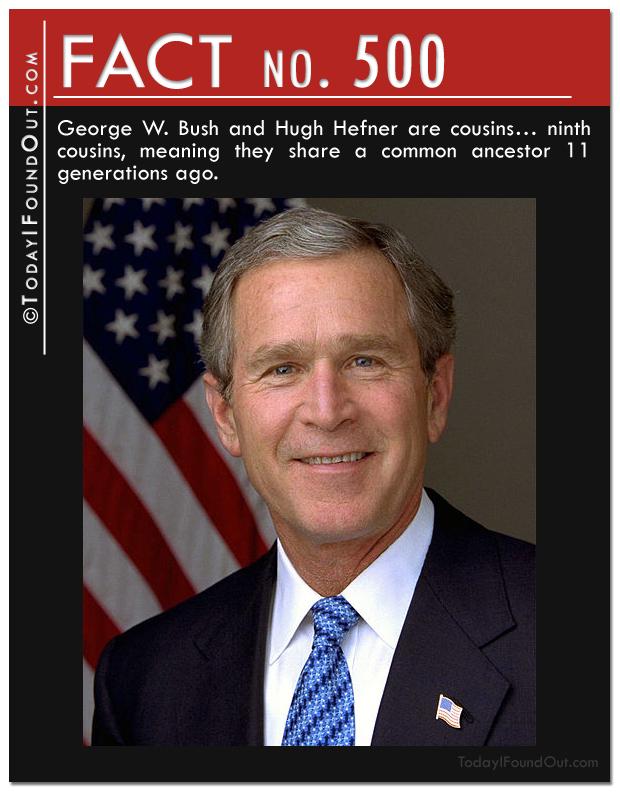 bush-fact