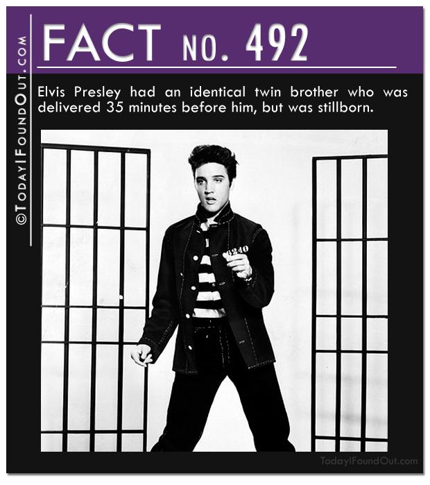 elvis-fact
