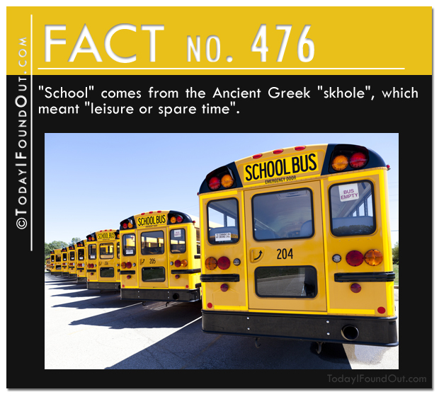 school-fact