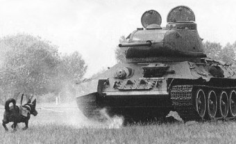 Anti-tank-Dog2