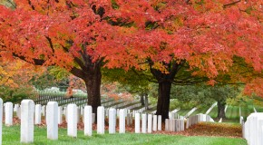 The Fascinating Origin of Arlington National Cemetery