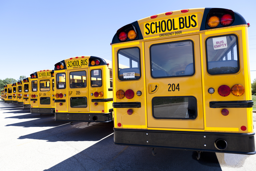 Why School Buses Are Yellow And Why They Dont Typically Have Seatbelts