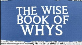 Today I Found Out's First Book: The Wise Book of Whys