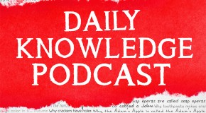 Today I Found Out's New Daily Knowledge Podcast