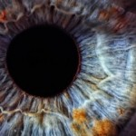 eye-340x226
