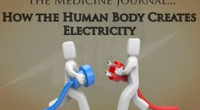 How the Body Generates Electricity