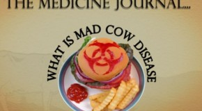 What is Mad Cow Disease