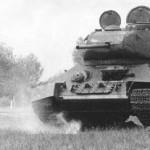 Anti-tank-Dog2-340x207