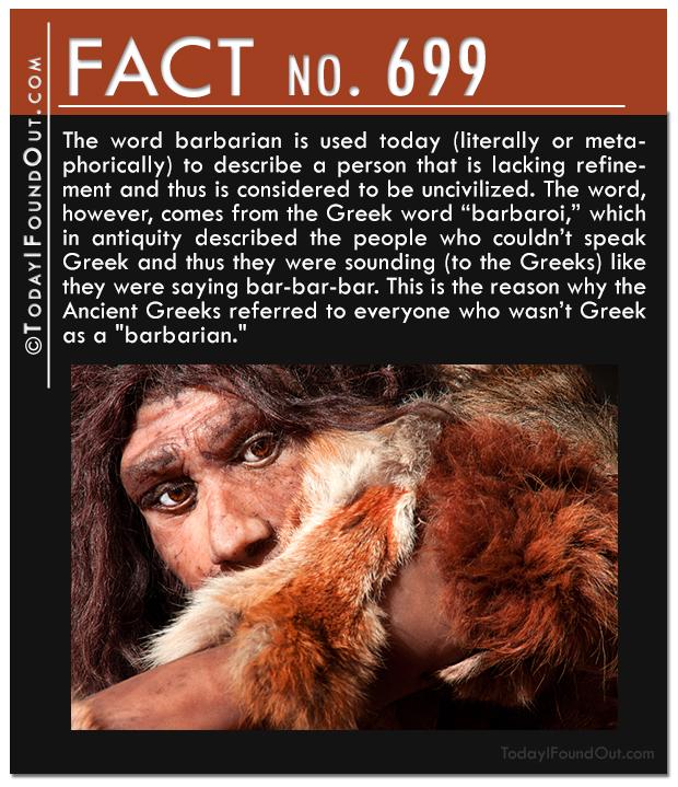 TIFO-Quick-Fact-699