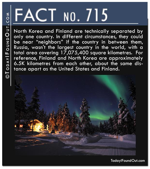 TIFO-Quick-Fact-715