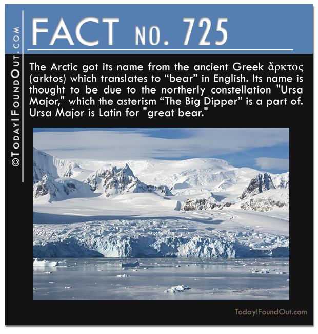 TIFO-Quick-Fact-725