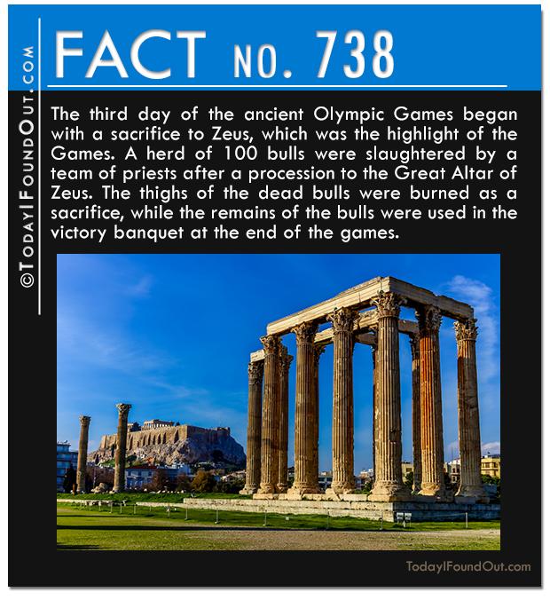 TIFO-Quick-Fact-738