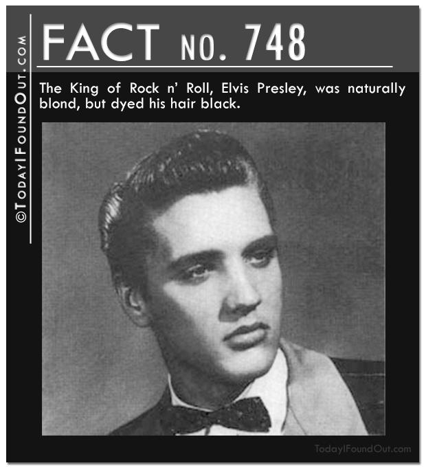 TIFO-Quick-Fact-748