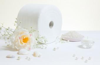 toilet-paper2