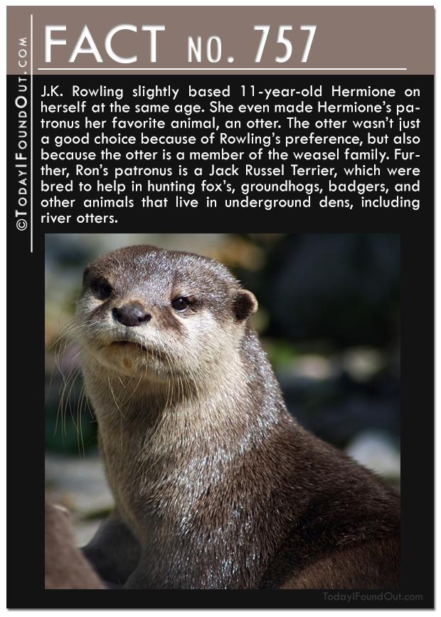 TIFO-Quick-Fact---757