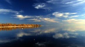 The Accidental Creation of the Salton Sea